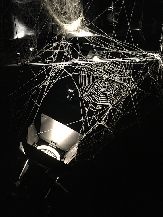 Instalação de Tomás Saraceni realizada com teias de aranha (Museu de Arte Moderna de Buenos Aires, 2017)