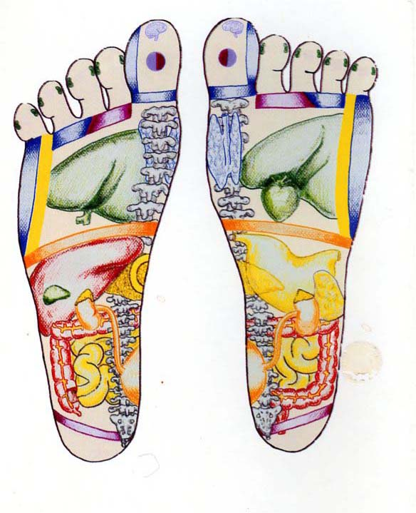 Reflexology Seminars of New York