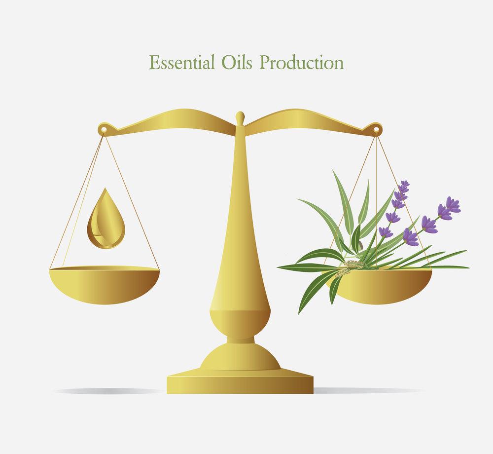Scales e oil oils production  illustration.jpg