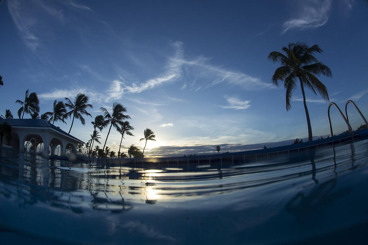 Morning swim, Florida.