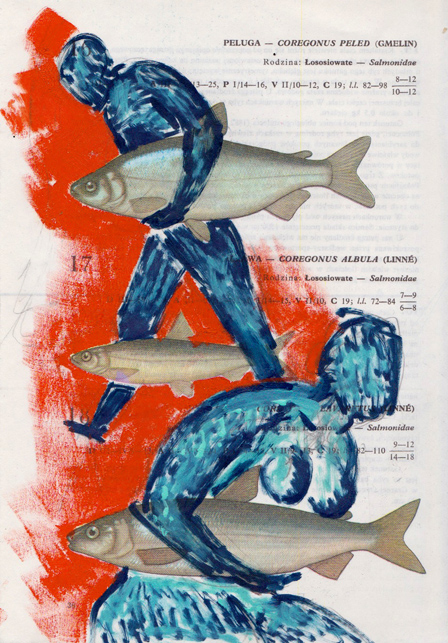 Poisson 4 , 2013, mixed media collage