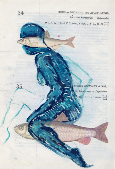Poisson 7 , 2013, mixed media collage