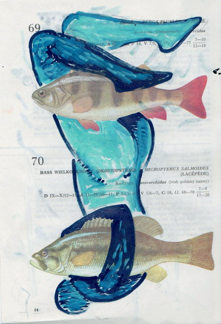 Poisson 9 , 2013, mixed media collage