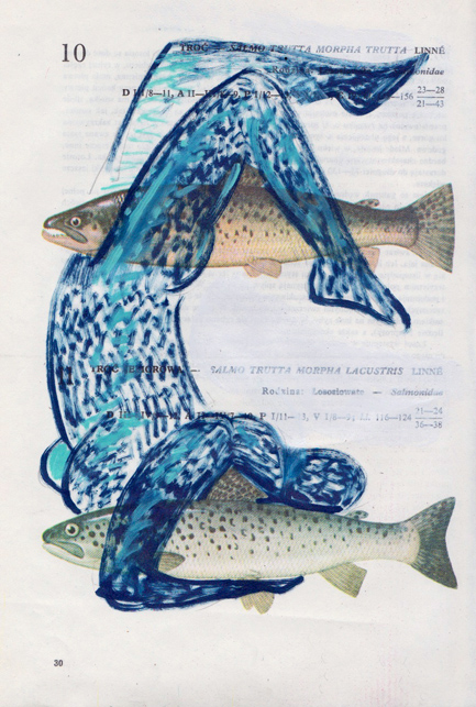 Poisson 17 , 2013, mixed media collage