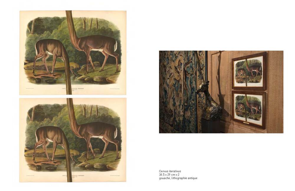 A body of twenty works on paper commissioned by the Musée de la Chasse et de la Nature. An exercise of pseudo-historical documentation. Retelling a fictive safari expedition, subverting original eighteenth, nineteenth and early twentieth century artifacts to explore the art of hunting, as a metaphor for man's quest of self.