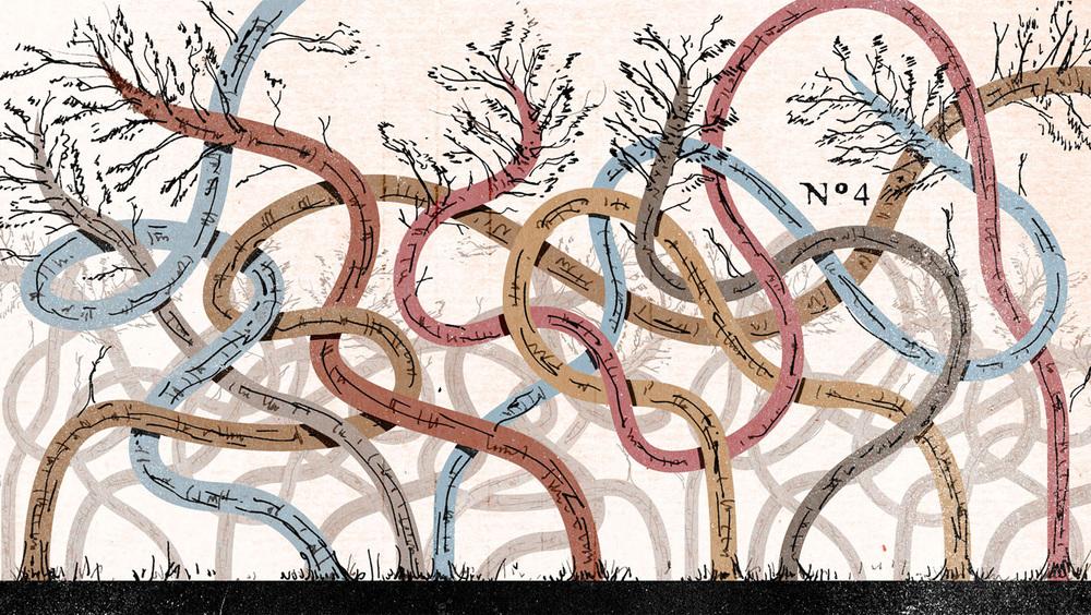 Invisibilia , NPR 2015