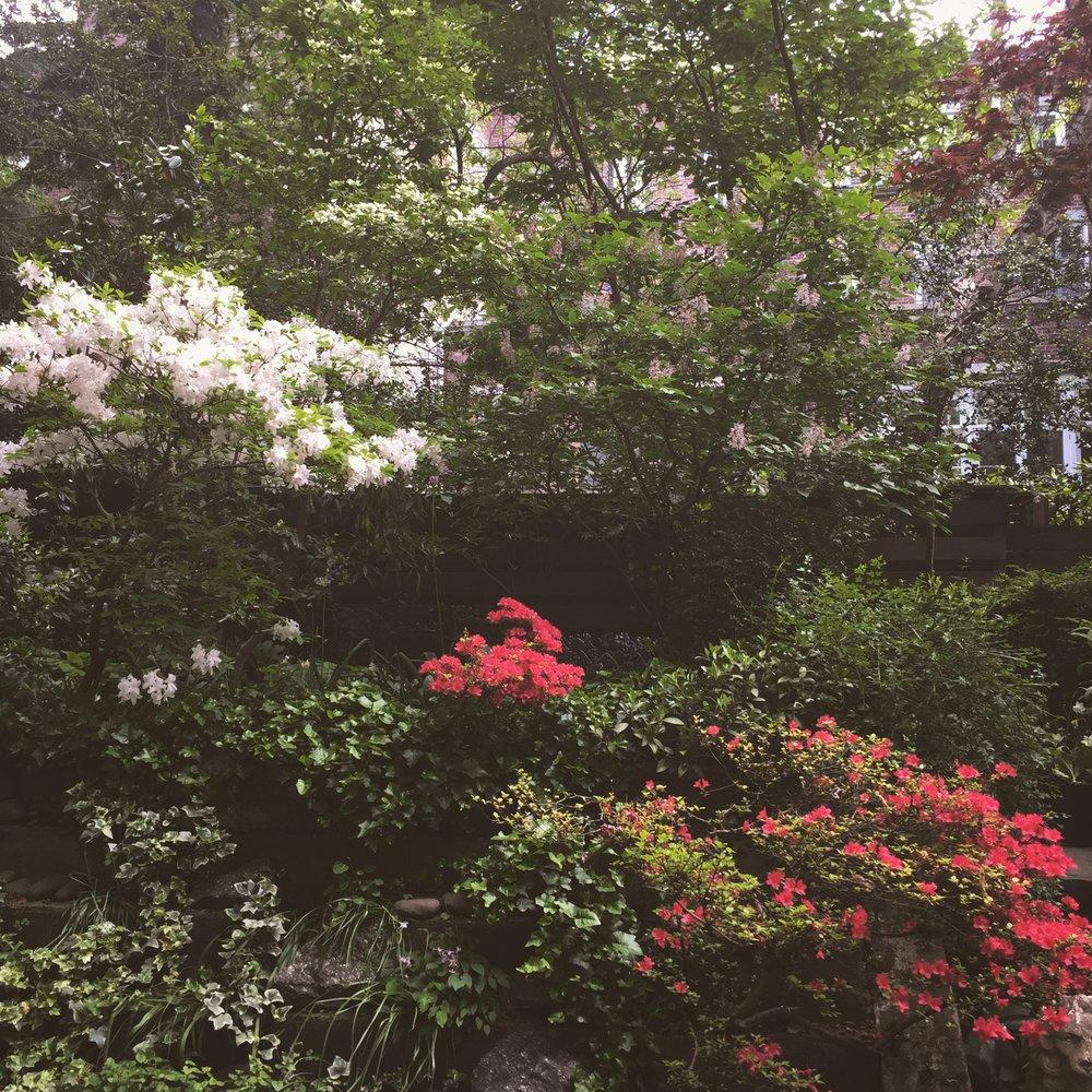 Horticulturist — TORI SPARKS