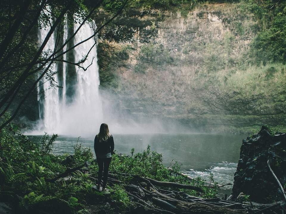 Βιντεο για καλλιτεχνεσ - Είστε ετοιμοι για το επόμενο σας βήμα; Κανείς δεν ακούει το δέντρο που πέφτει στο δάσος.
