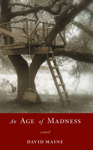 An Age of Madness cover