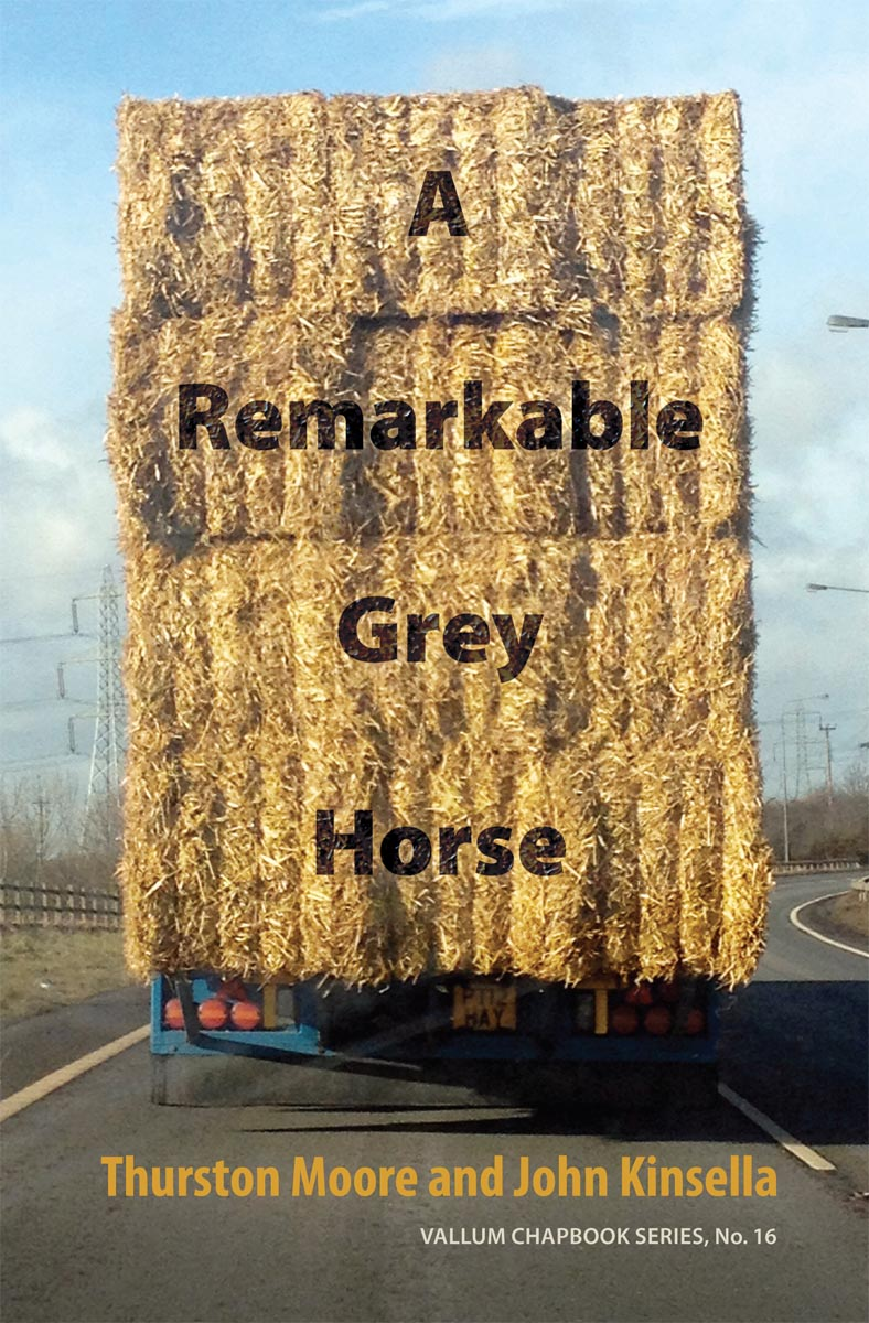 A Remarkable Grey Horse.jpg