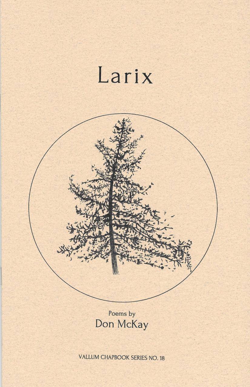 Larix Don McKay.jpg