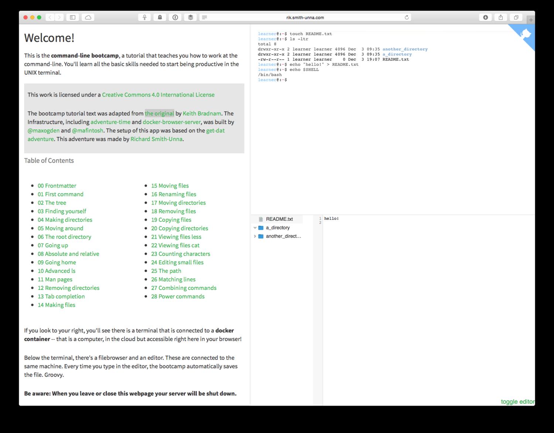 Browser Bash