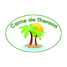 CDT-Logo5.jpg