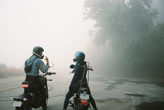 A misty morning in the mountains, trying to keep up with these moto women through the curves. #film #photography #motorcycle