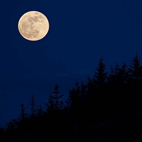 Milk-Moon-Acadia-Jim-Nickelson.jpg