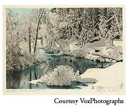 vox_winter.jpg
