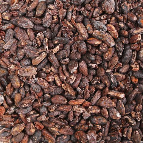 Cacaobeans_peeled.JPG