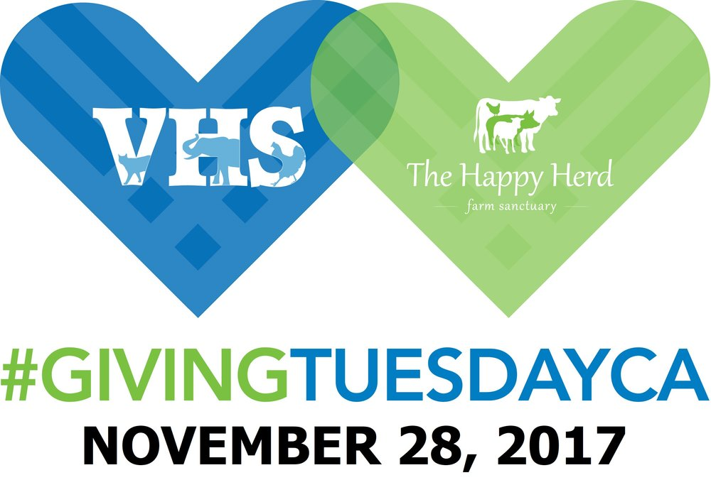 Giving Tuesday Logo 2017.jpg