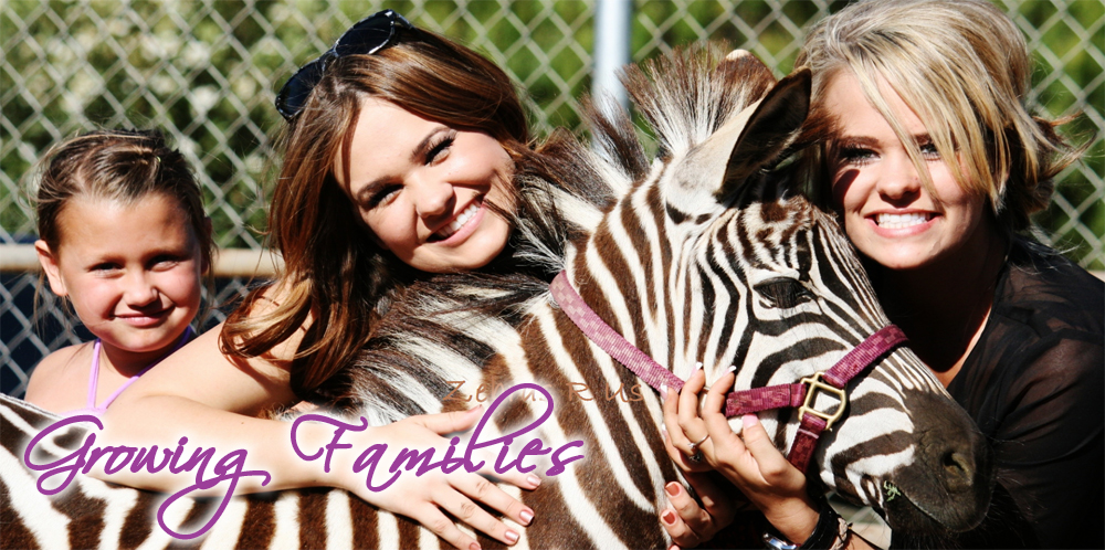 ZEBRAS R US ADVERTISEMENT PICTURE.png