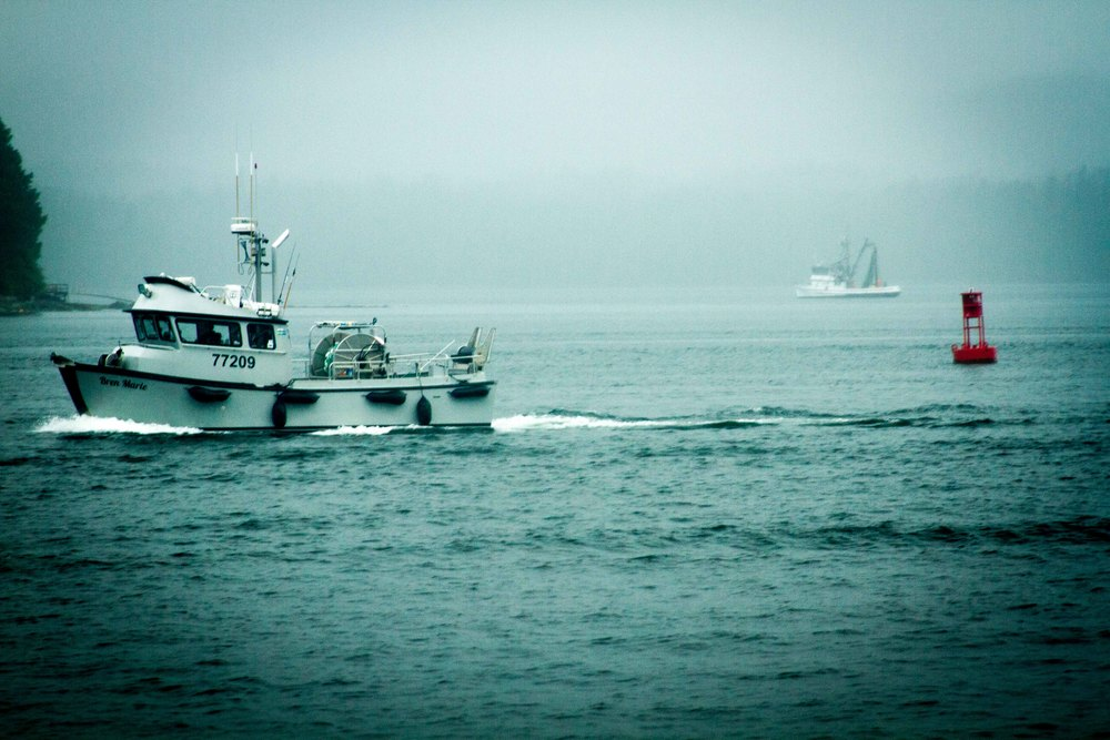 Fishermen coming home in Ketchikan, Alaska