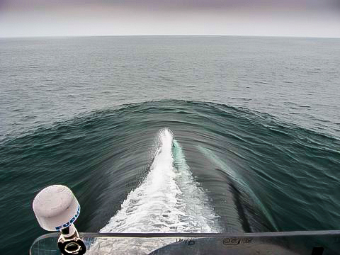 From the bridge of the USS Helena, before we took her down 600 feet!