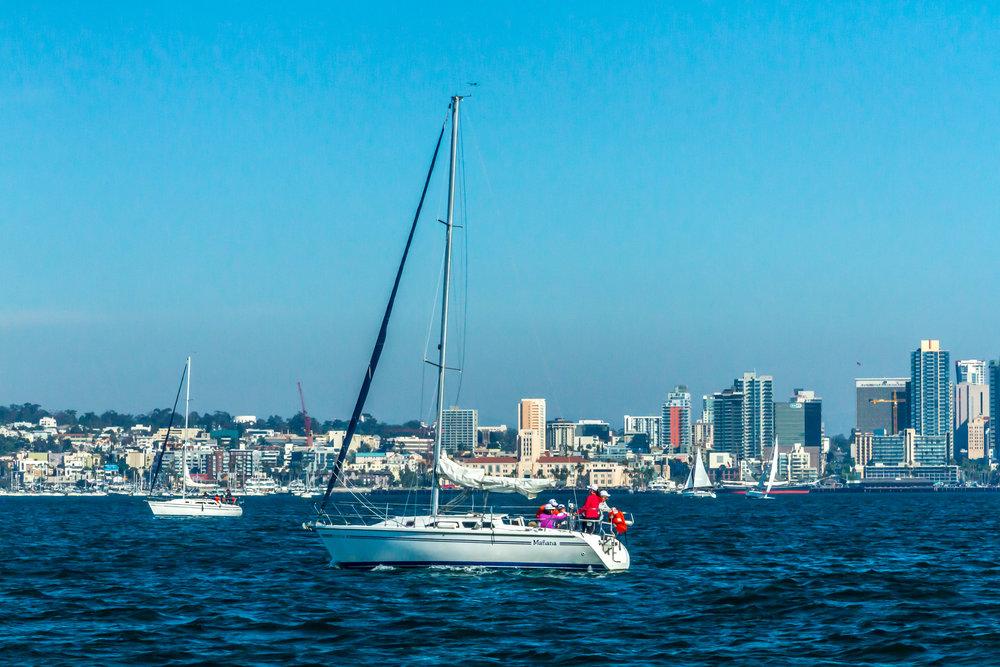 cataliina sailboats on San Diego Bay.jpg