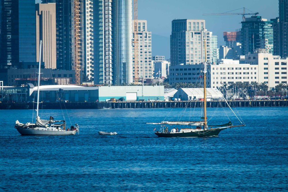 Sailboats and San Diego Skyline