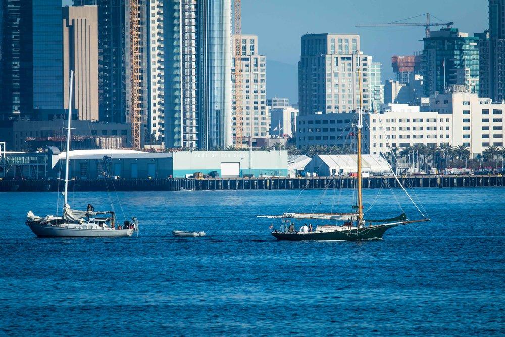 Sailboats and San Diego Skyline