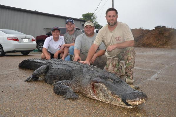 Hunters-nab-massive-alligator-to-break-Mississippi-state-record (2).jpg