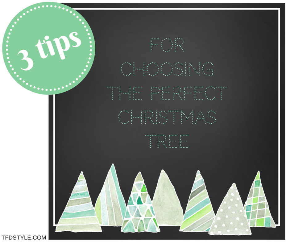 3 tips to choosing the perfect christmas tree