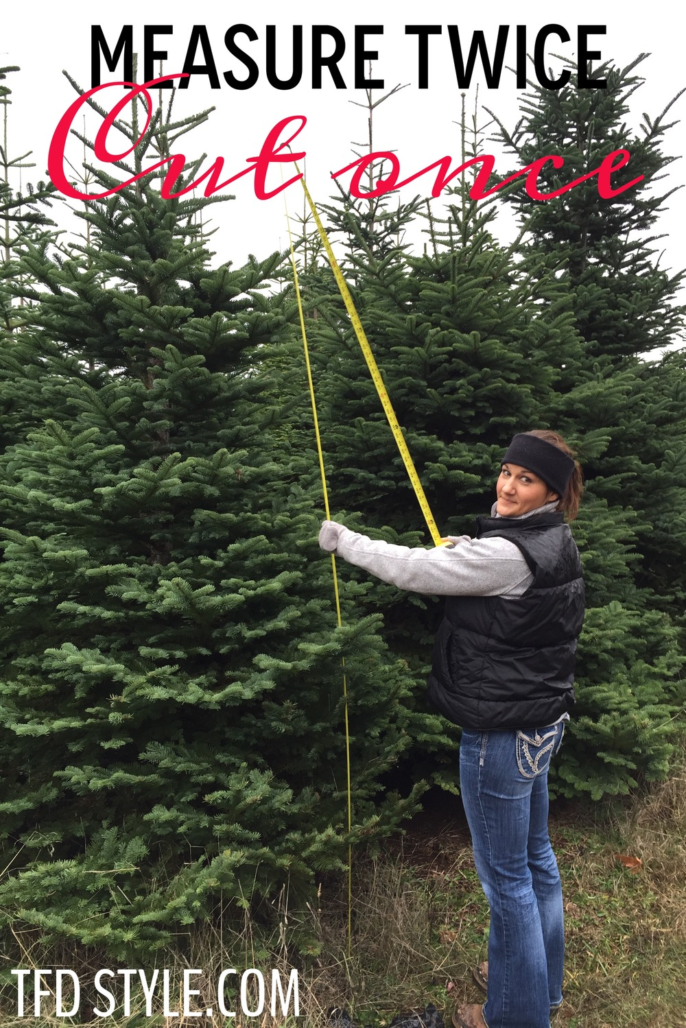 3 Tips to finding the Perfect Christmas Tree