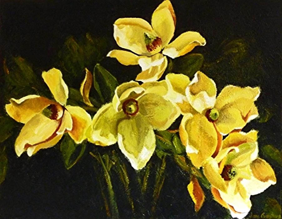Magnificent Magnolias Acrylic 36 x48