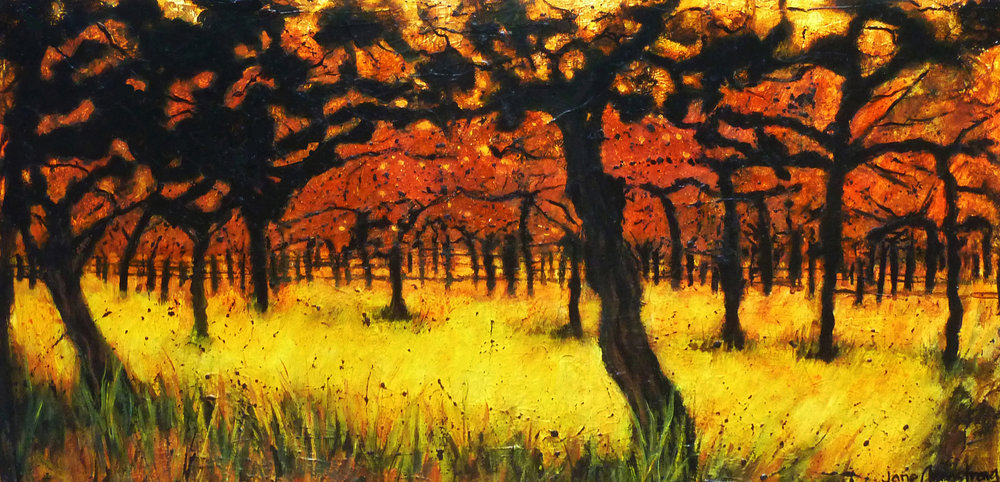 Dusk in the Autumn Orchard Acrylic 24 x 48