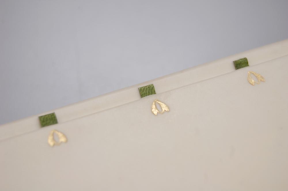 Green slips 3.jpg