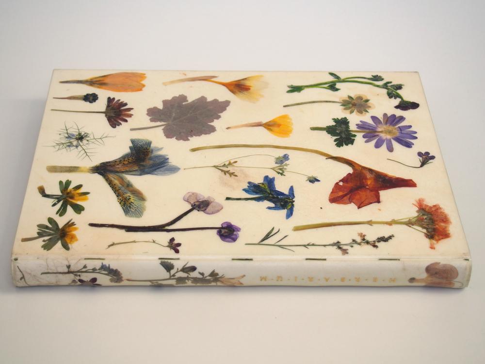 Herbarium 2.jpg