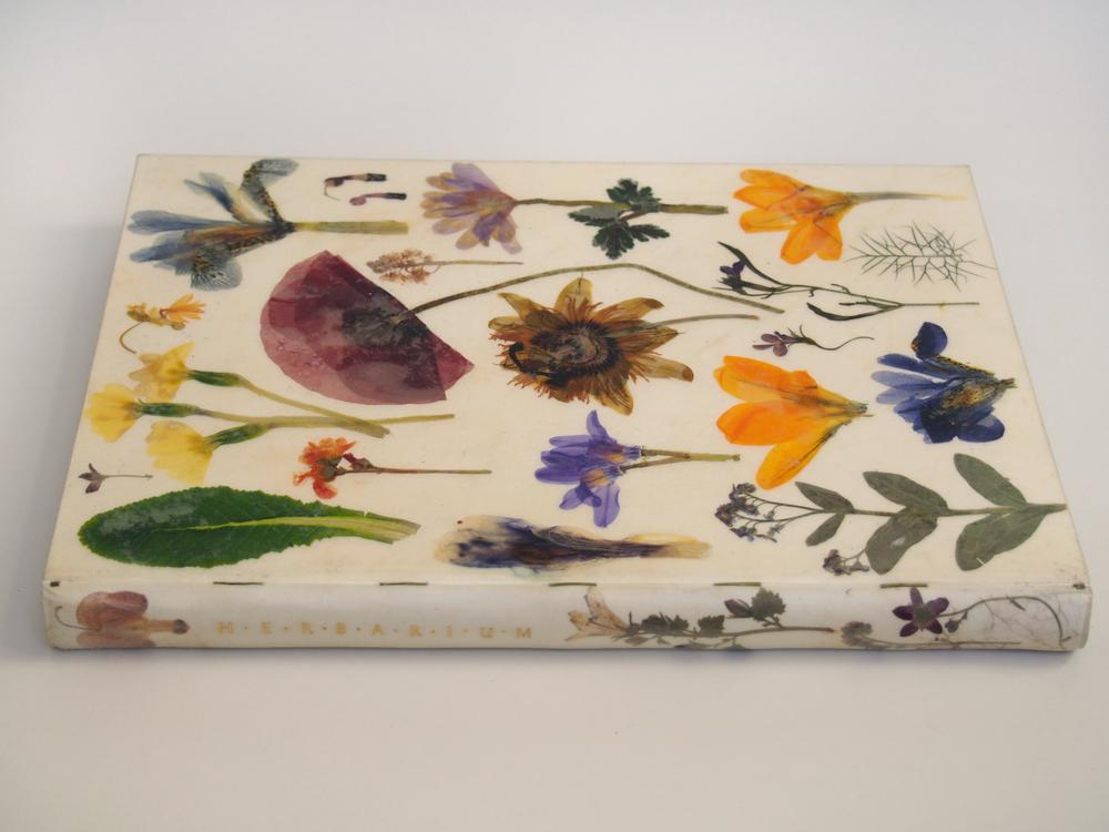 Herbarium 1.jpg