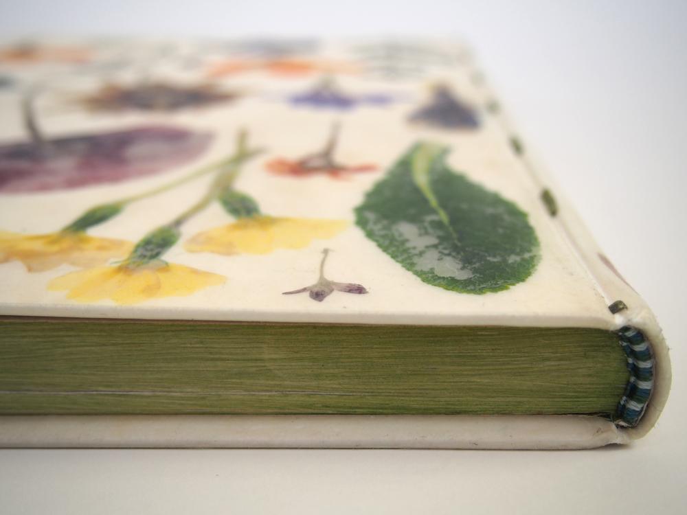 Herbarium 11.jpg