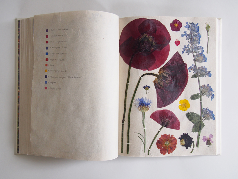 Herbarium 34.jpg
