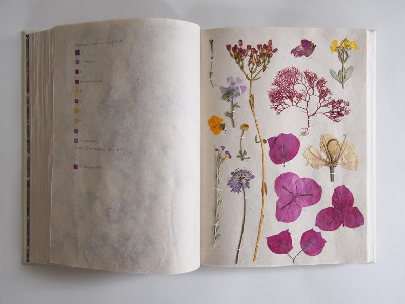 Herbarium 35.jpg