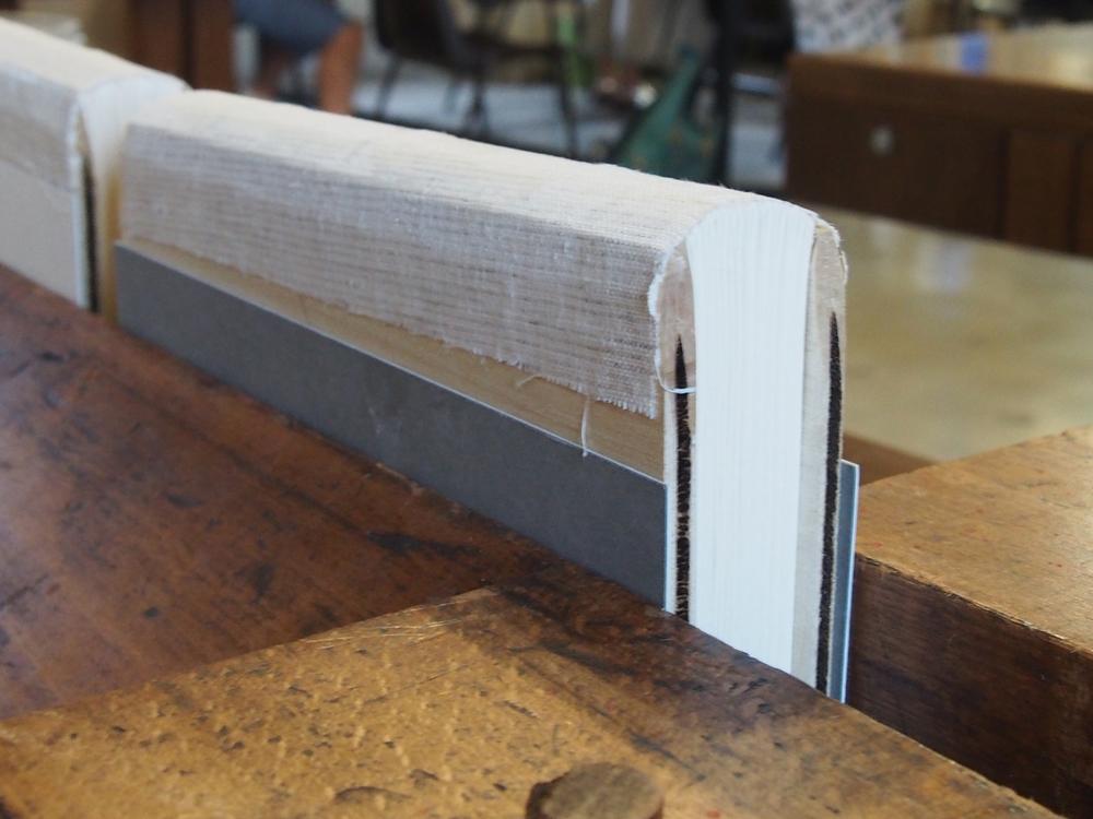 9 spine lining.jpg