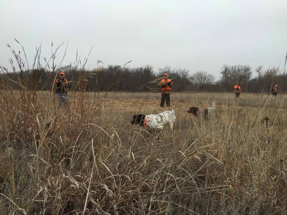 Here you see Daisy with the great point and Cora with the honor.  Our german shorthair pointers love to hunt.