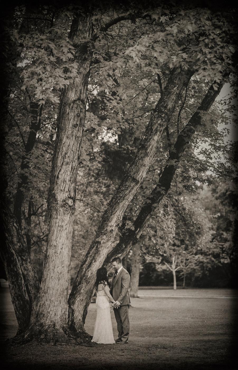 brent_steph_wedding_vintage5.jpg