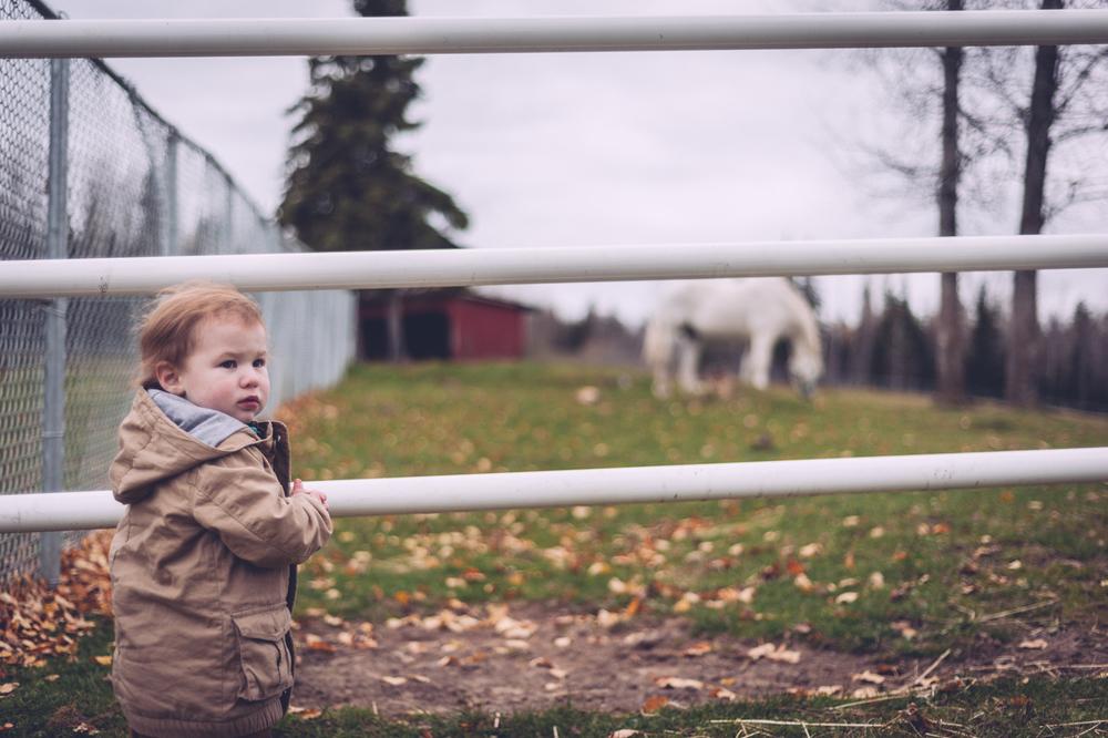 carol_family_portraits_blog20.jpg
