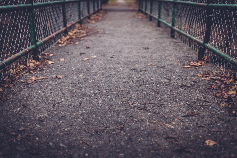 boulevard_lake_blog2.jpg