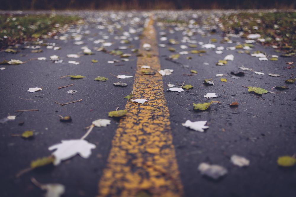 boulevard_lake_blog7.jpg