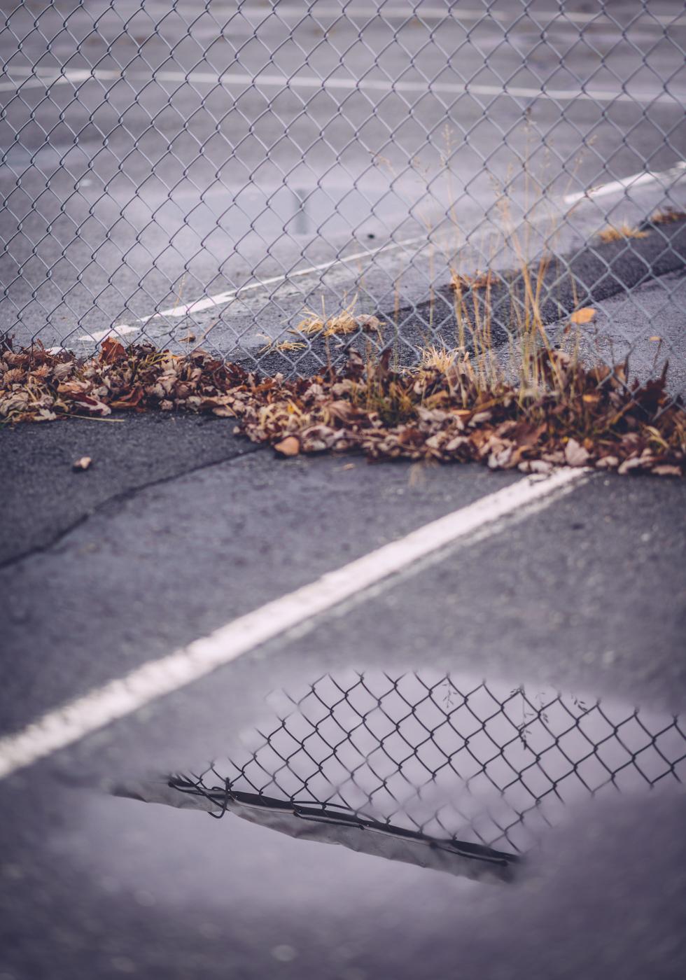 boulevard_lake_blog41.jpg