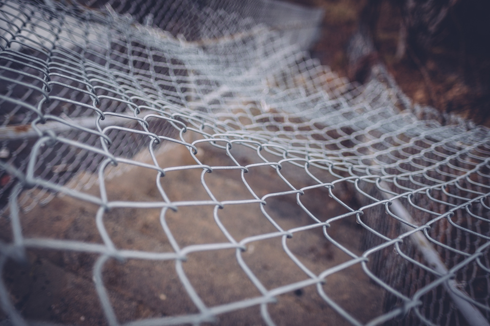 fishermanswharf_12011519.jpg