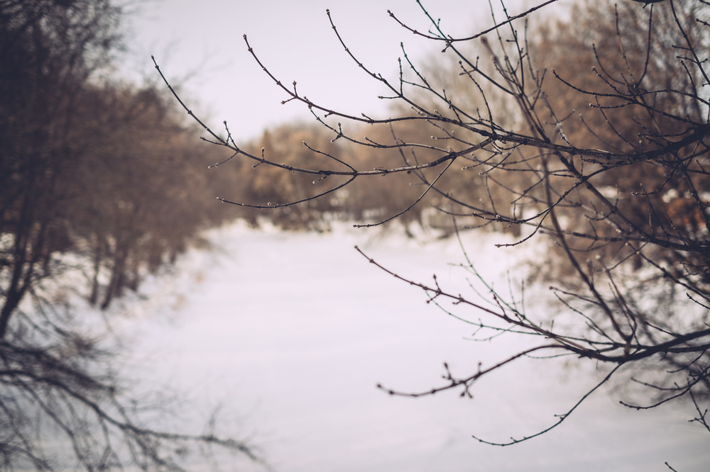 macintyre_river_walk_02182169.jpg