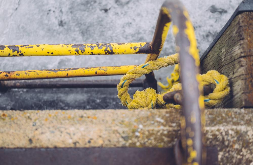 fishermanswharf_marina7.jpg