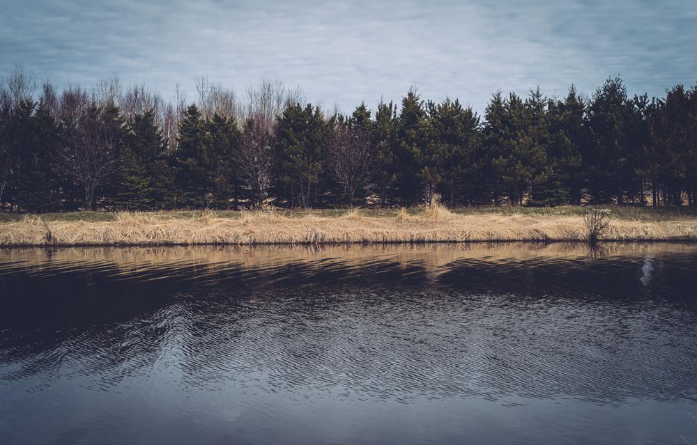 eastend_neebingriver49.jpg